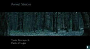 «Forest Stories», Τάνια Γιαννούλη & Paulo Chagas