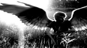 «Άγγελος πεπτωκώς», Σοφία Νινιού