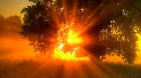 «Όλη η μέρα» Πολυξένη Βακιρλή