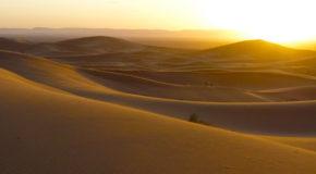 Ένα ταξίδι στο Μαρόκο, Λεμονιά Μουλά