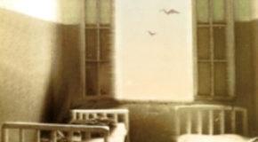 ΙΕΡΑ ΟΔΟΣ 343 – Μαρία Σ. Φαφαλιού | Ένα βιβλίο για το Δρομοκαΐτειο | Αικατερίνη Τεμπέλη