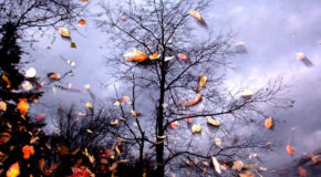 Ανάμνηση | Γιάννης Μανίκας | Άνεμος magazine
