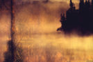 Για ένα κομμάτι γης | Ευγενία Οικονομοπούλου | Άνεμος εκδοτική
