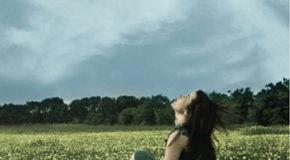 Τα χάρτινα πουλιά – της Ελένης Πριόβολου (εκδ. Καστανιώτη) | Η άποψη της Τζίνας Ψάρρη για το βιβλίο