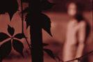 Ερήμην | Nάγια Κωστοπούλου | Άνεμος magazine