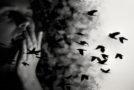 Η φωνή της ψυχής | Μαρία Βουζουνεράκη | Άνεμος magazine