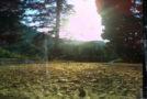 Απώλεια (βίντεο) | Χριστίνα Παπανικόλα | Άνεμος magazine