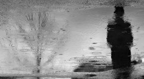Ο κύριος Δαλμάς | Βάσω Ζαφειροπούλου | Άνεμος magazine