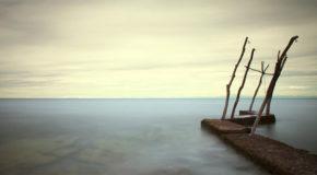 Μόνο | Tζίνα Ψάρρη
